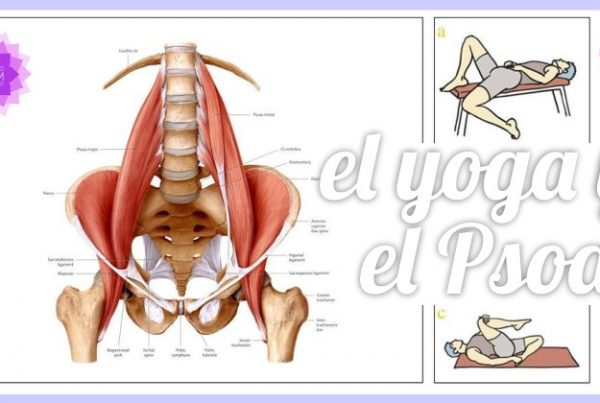 El yoga y el Psoas - Espacio Aum Yoga Studio Castelldefels